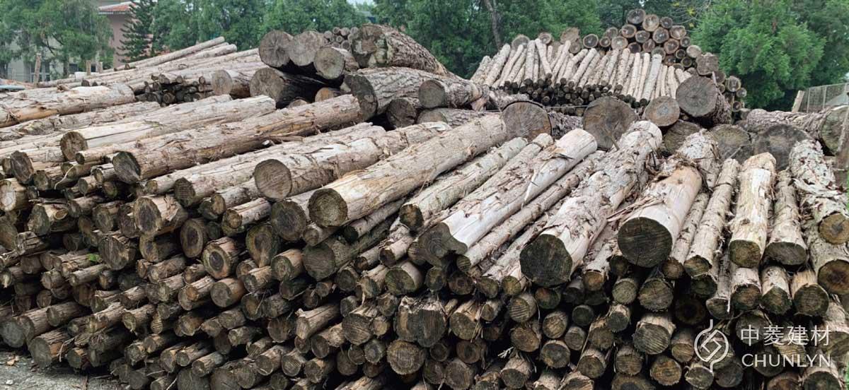 中菱生產鑽泥板所使用的木材,來自人工林場的台灣杉疏伐材,只取用「多的資源」保護山林生生不息